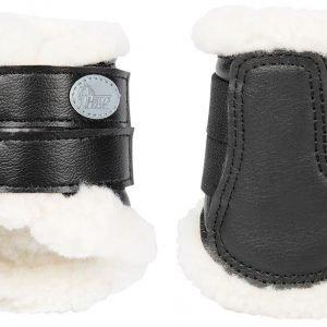 flextrainer mini zwart