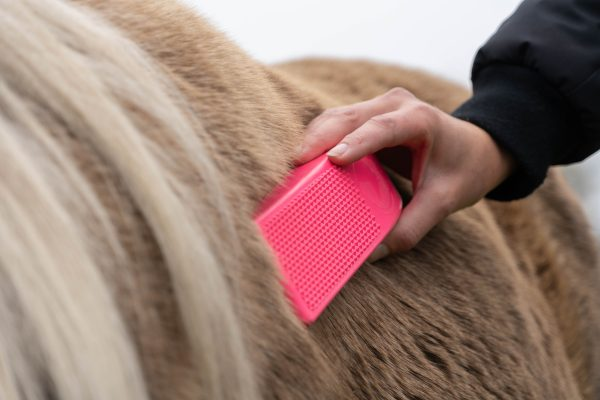 excellent grooming brush